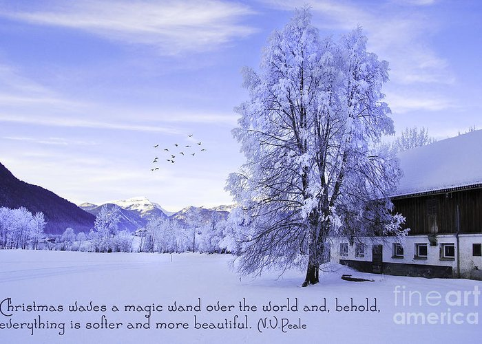 Winter Greeting Card featuring the photograph Magic Wand by Sabine Jacobs
