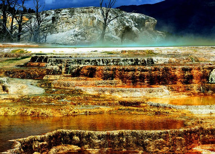 Yellowstone Greeting Card featuring the photograph Mammoth Terrace - Yellowstone by Ellen Heaverlo