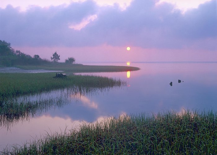 00175762 Greeting Card featuring the photograph Marsh At Sunrise Over Eagle Bay St by Tim Fitzharris