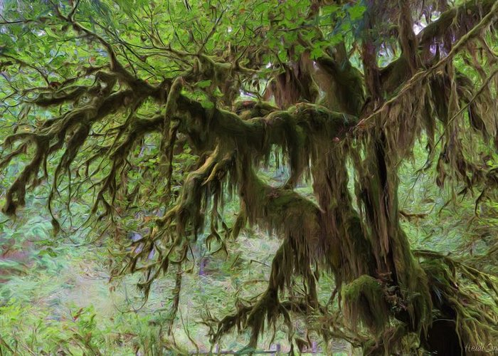 Hall Of Mosses Greeting Card featuring the photograph Marvelous Moss by Heidi Smith