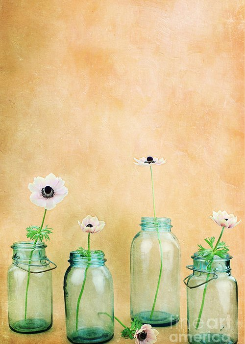 Flower Greeting Card featuring the photograph Mason Jars by Stephanie Frey