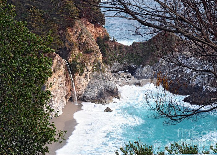 Photo Greeting Card featuring the photograph Mcway Falls In Spring by Tonia Noelle