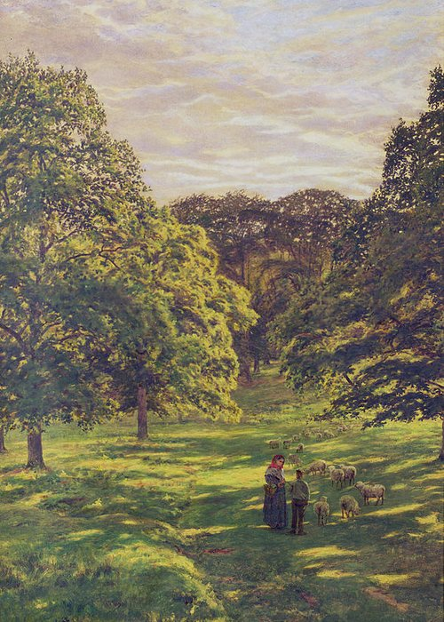 Woods; Shadows; Trees Greeting Card featuring the painting Meadow Scene by John William Buxton Knight
