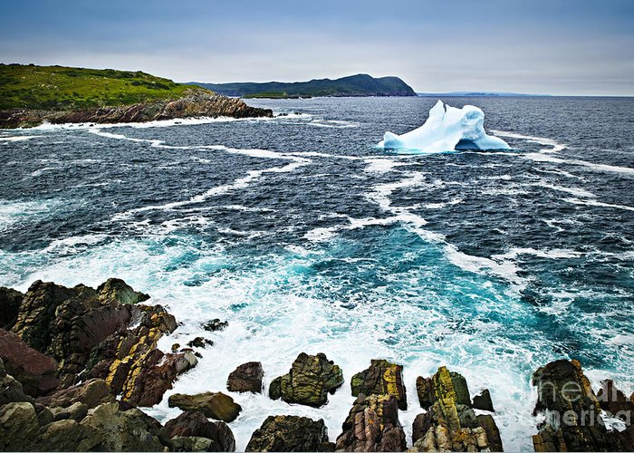 Iceberg Greeting Card featuring the photograph Melting Iceberg In Newfoundland by Elena Elisseeva