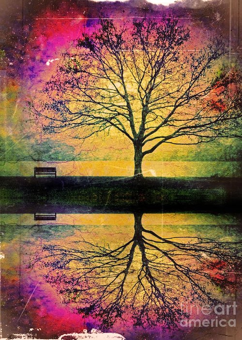 Bench Greeting Card featuring the photograph Memory Over Water by Tara Turner