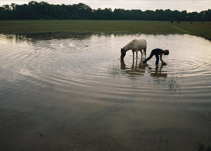 Water Holes Greeting Card featuring the photograph Mennonite Farm Child With Horse by Randy Olson