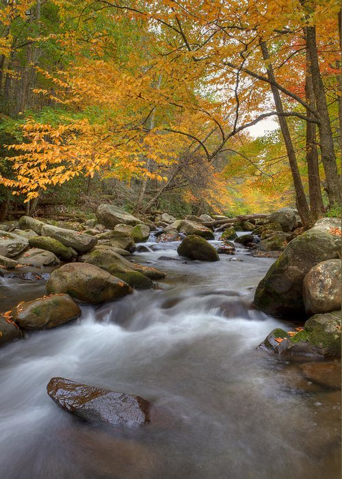 Great Smoky Mountains Greeting Card featuring the photograph Mid Stream II by Charles Warren