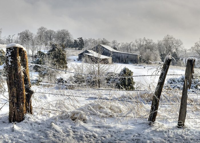 Fence Greeting Card featuring the photograph Midwestern Ice Storm - D004825 by Daniel Dempster