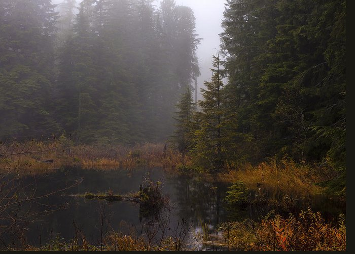 Fall Greeting Card featuring the photograph Misty Solitude by Mike Reid