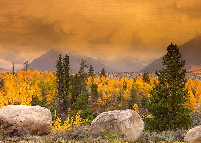 Fall Colors Greeting Card featuring the photograph Moody by Tim Reaves