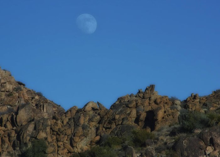 Moon Greeting Card featuring the photograph Moon Rise Joshua Tree by Linda Dunn