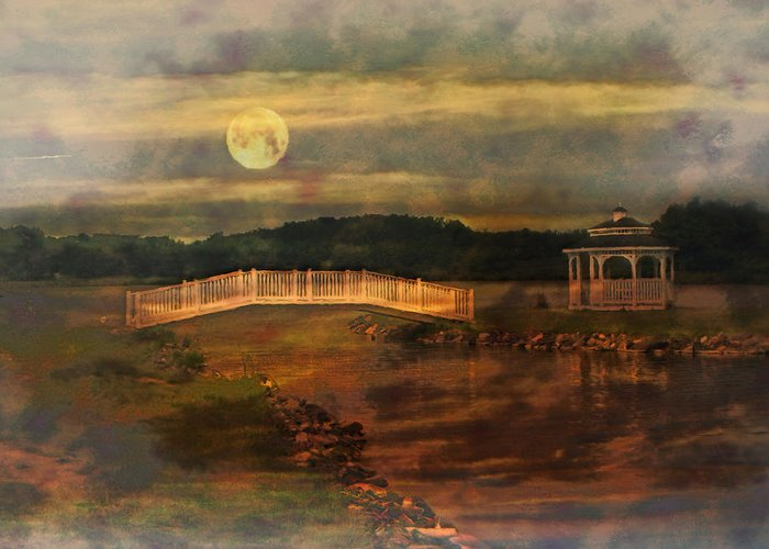 Willow Lake Greeting Card featuring the photograph Moonlight Stroll by Kathy Jennings