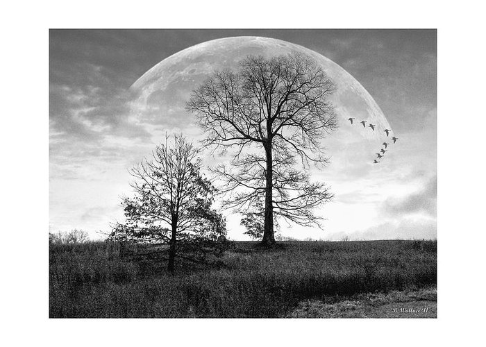 2d Greeting Card featuring the photograph Moonlit Silhouette by Brian Wallace