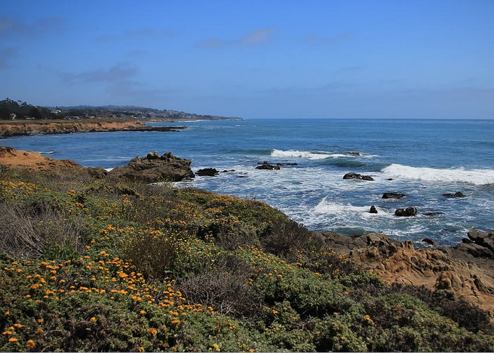 Moonstone Greeting Card featuring the photograph Moonstone Beach by Heidi Smith
