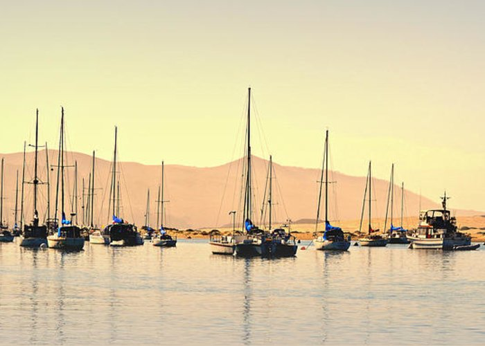 Boats In Harbor Greeting Card featuring the photograph Moorings by Fraida Gutovich