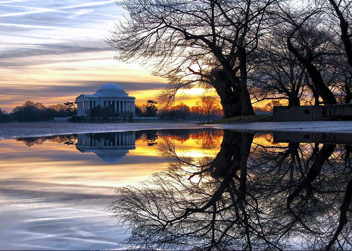 Jefferson Memorial Greeting Card featuring the photograph More Than Gold by Mitch Cat