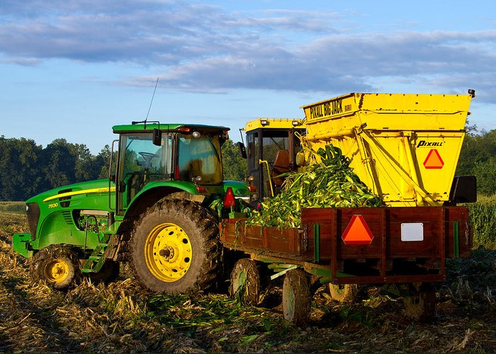 John Deere Greeting Card featuring the photograph Morning Harvest by Tim Fitzwater