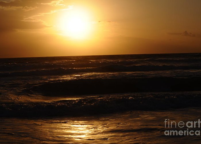 Sunshine Greeting Card featuring the photograph Morning by Laura Ogrodnik