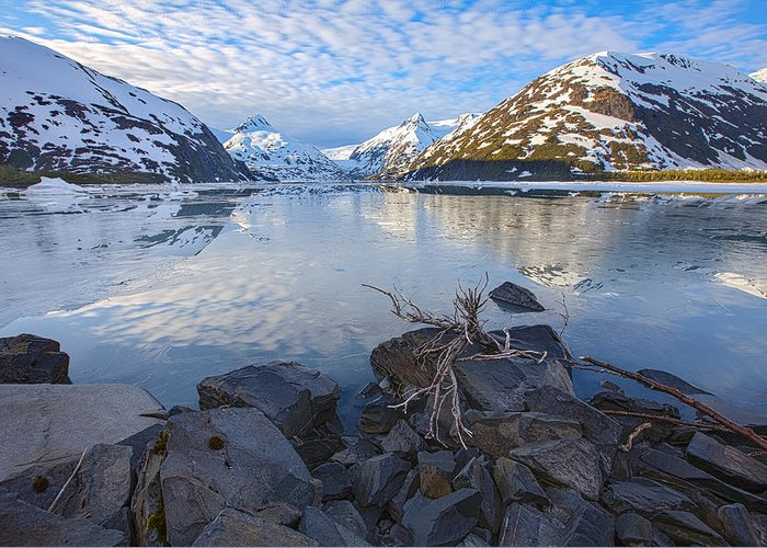 Alaska Greeting Card featuring the photograph Morning Light At Portage Lake by Tim Grams