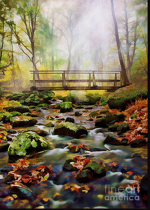 Autumn Greeting Card featuring the photograph Morning Light by Darren Fisher