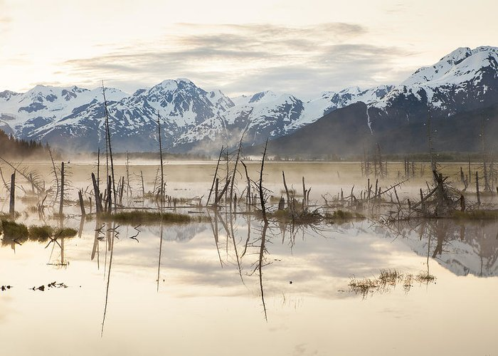 Alaska Greeting Card featuring the photograph Morning Mist At Twenty Mile by Tim Grams