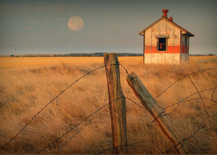 Morning Greeting Card featuring the photograph Mornings Calm by Al Swasey