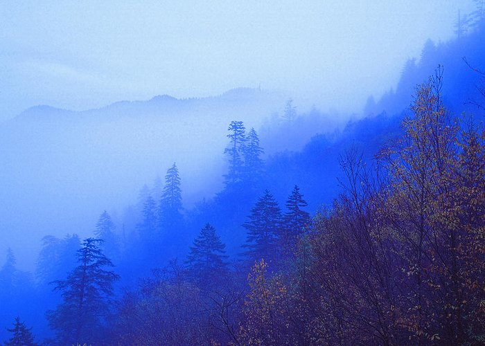 Autumn Landscapes Greeting Card featuring the photograph Mountain Mist by Chuck Wickham