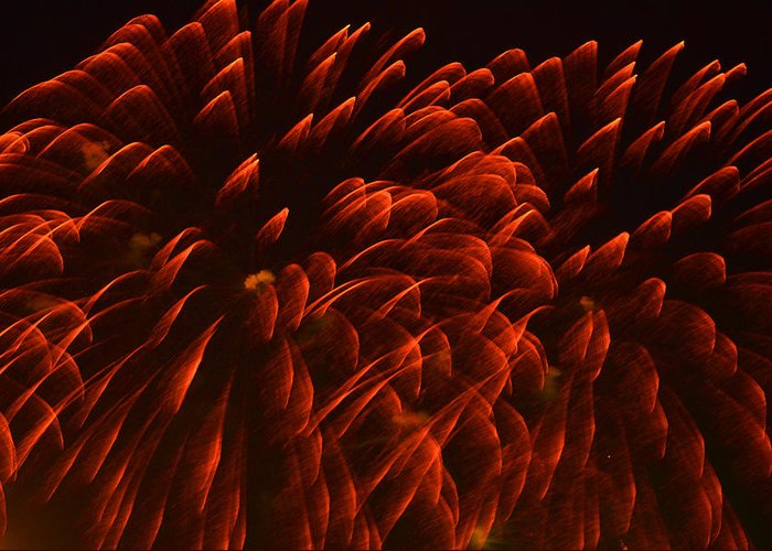 Fireworks Greeting Card featuring the photograph Mums Absract by Sandi OReilly