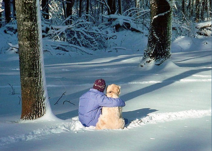 Snow Greeting Card featuring the photograph My Best Friend by Elisia Cosentino