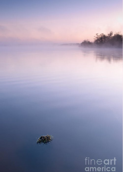 Lac Greeting Card featuring the photograph Mysterious Dawn by David Gimenez Aldalur