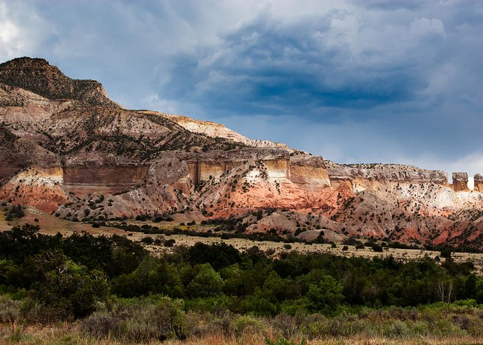 Arizona Greeting Card featuring the photograph Nature's Paintbrush by Jason Smith