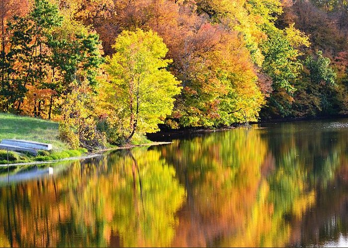 Fall Greeting Card featuring the photograph Nature's Watercolor by Kim Hymes