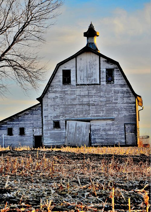 Nebraska Barn Greeting Card featuring the photograph Nebraska Aviance by Christine Belt