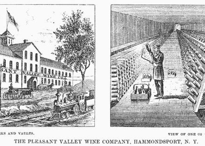 1878 Greeting Card featuring the photograph New York: Winery, 1878 by Granger