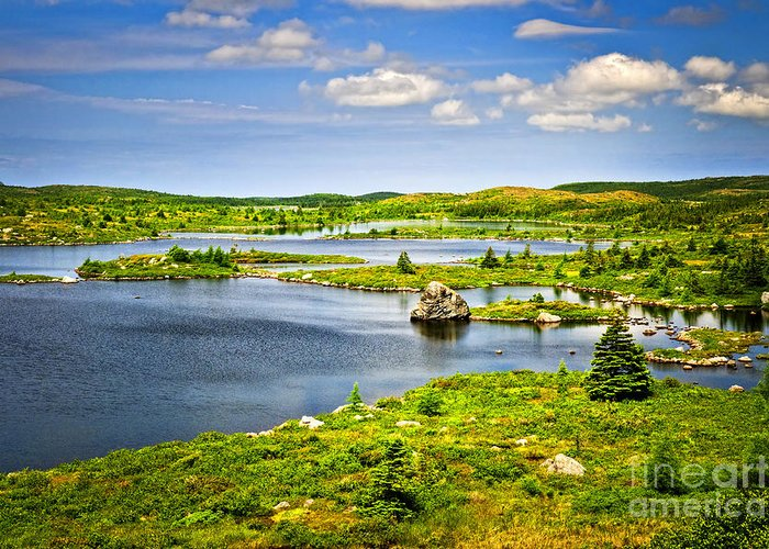 Lakeshore Greeting Card featuring the photograph Newfoundland Landscape by Elena Elisseeva