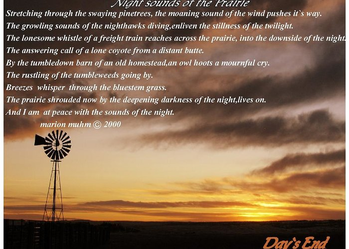 Landscape Greeting Card featuring the photograph Night Sounds Of The Prairie by Marion Muhm