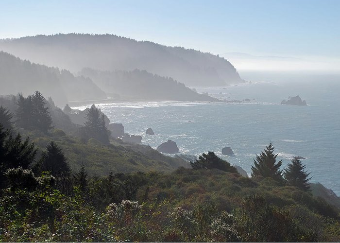 California Greeting Card featuring the photograph Northern California Coast by Twenty Two North Photography