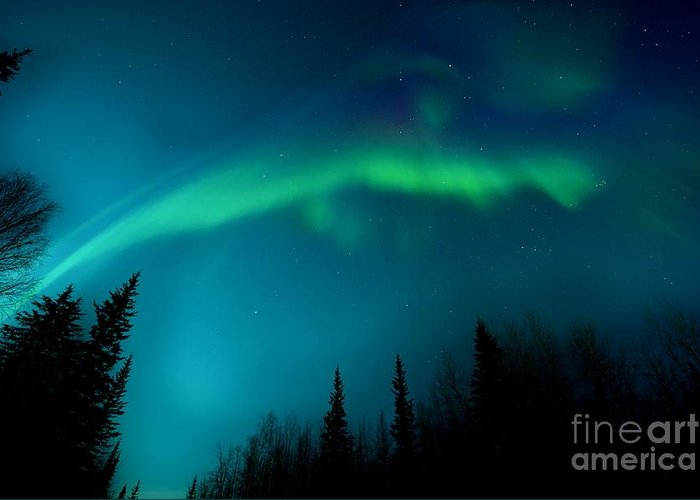 Lights Greeting Card featuring the photograph Northern Magic by Priska Wettstein
