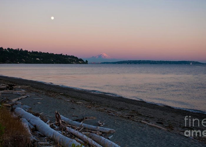 Rainier Greeting Card featuring the photograph Northwest Evening by Mike Reid