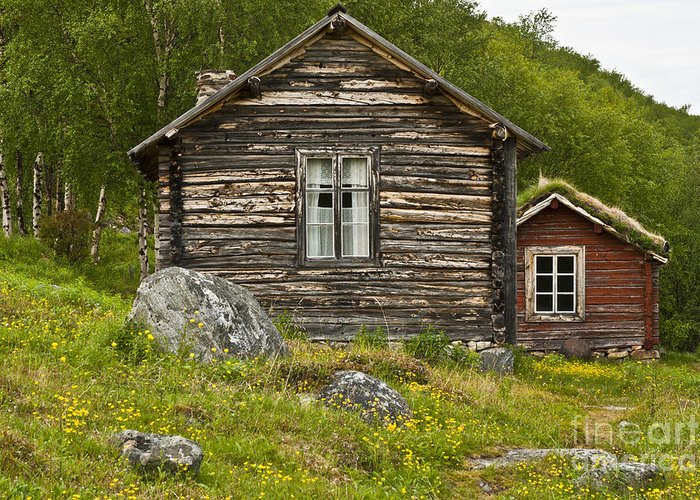 Europe Greeting Card featuring the photograph Norwegian Timber House by Heiko Koehrer-Wagner