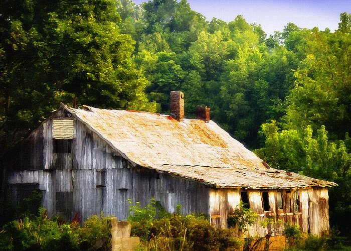 Nature Greeting Card featuring the photograph Not So Far From A Home by Steve Buckenberger