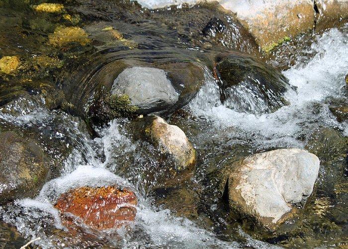Oak Creek Greeting Card featuring the photograph Oak Creek by Lauri Novak