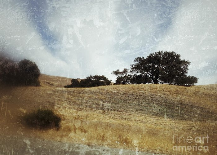 California Greeting Card featuring the photograph Oak Trees In A California Landscape by Ruby Hummersmith