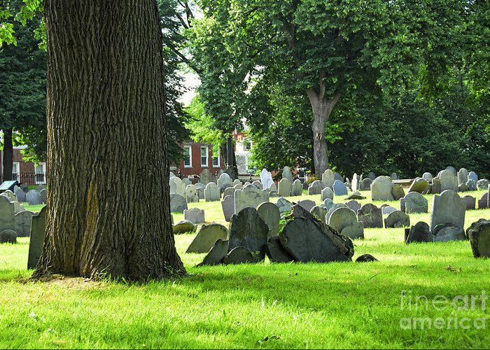 Old Greeting Card featuring the photograph Old Cemetery In Boston by Elena Elisseeva