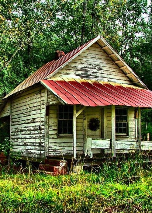 Abandoned Housese Greeting Card featuring the photograph Old Florida Vi by Julie Dant