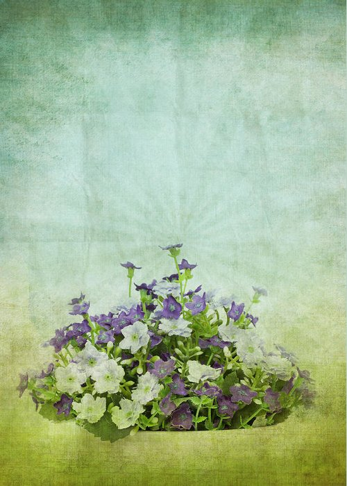 Abstract Greeting Card featuring the photograph Old Grunge Paper Flowers Pattern by Setsiri Silapasuwanchai