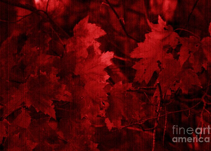 Leaf Greeting Card featuring the photograph Old Red by Marjorie Imbeau