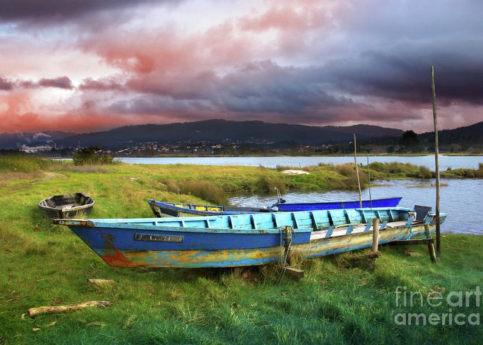Autumn Greeting Card featuring the photograph Old Row Boats by Carlos Caetano