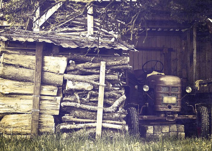Tree Greeting Card featuring the photograph Old Shed by Joana Kruse