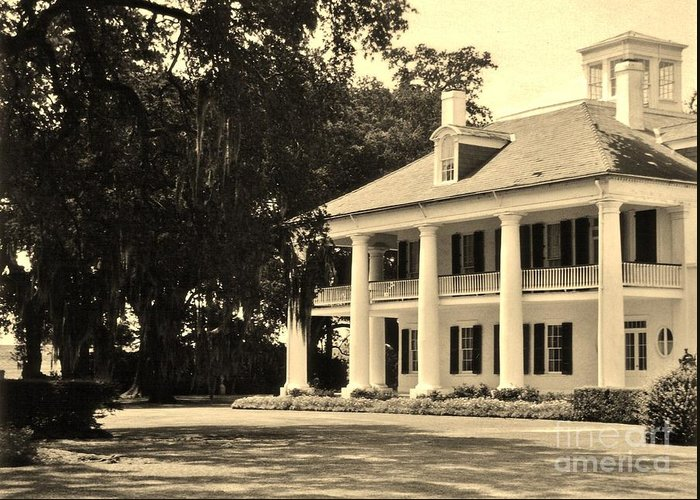Plantation Greeting Card featuring the photograph Old Southern Plantation by John Malone